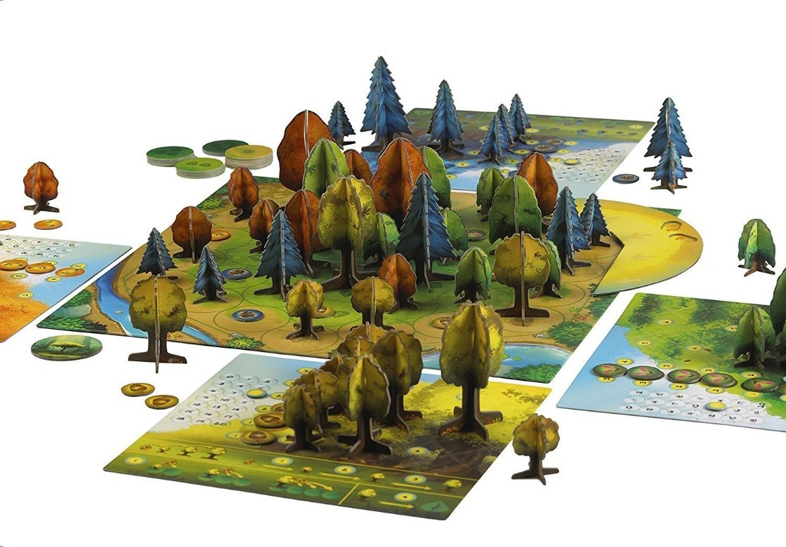 Photosynthesis board game 2